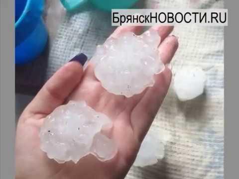 Разгул стихии в Новозыбкове. 23.06.2019 г.