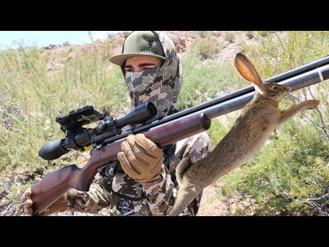 RABBIT HUNTING with AIR RIFLE & Skoped Vision Gear Review