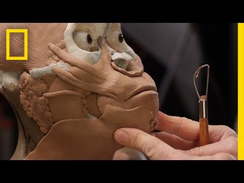 Exclusive: Building the Face of a Newly Found Ancestor | National Geographic
