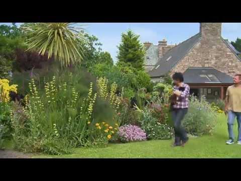 Jardin de Bretagne : le jardin de Babou