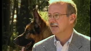 Harrison Prather Harrison K9 Protection Trained German Shepherd