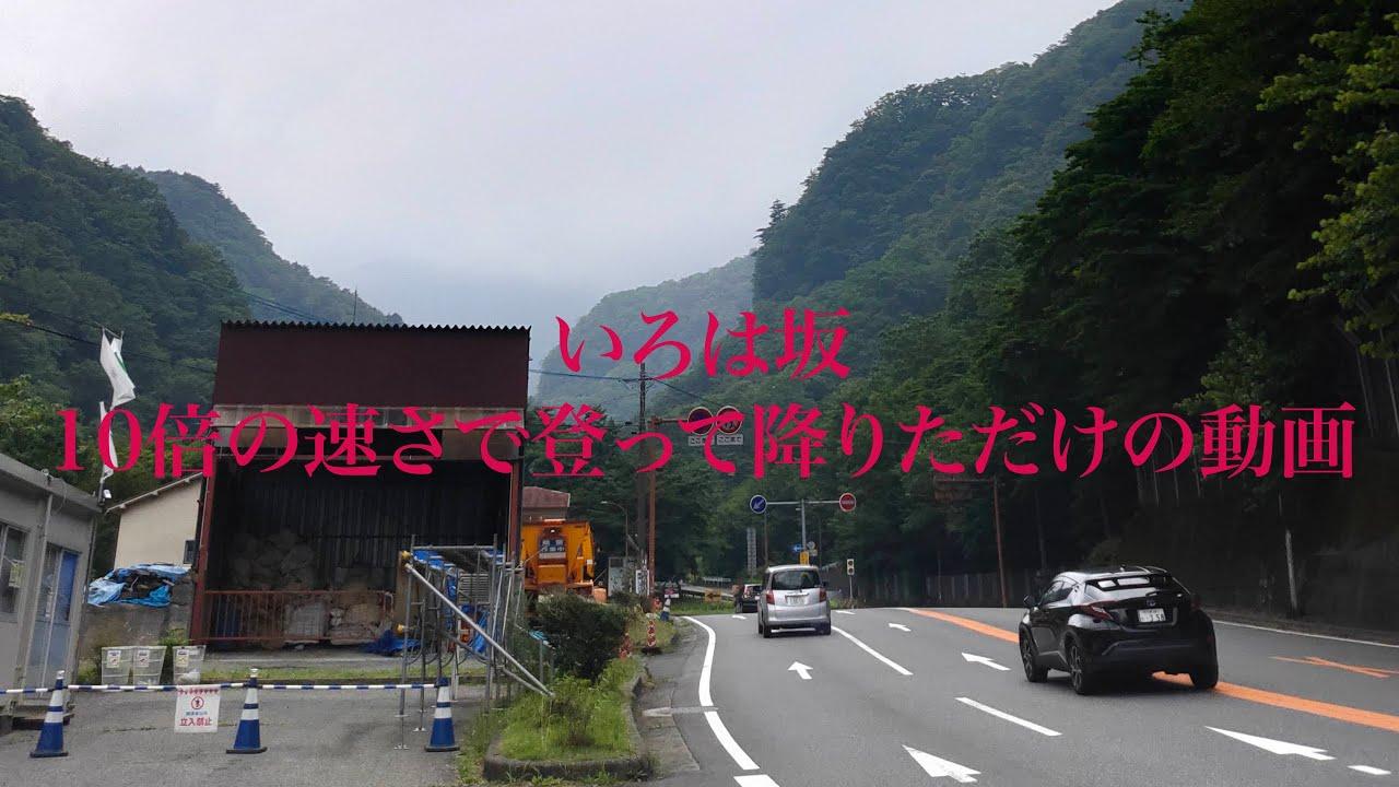 【ドライブ動画】いろは坂を10倍の速さで登って降りただけの動画【峠バトル】