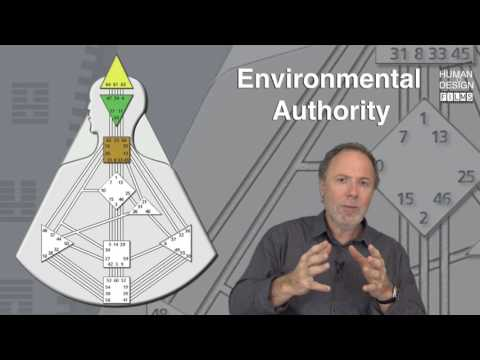 ENVIRONMENTAL AUTHORITY by Richard Beaumont - PREVIEW