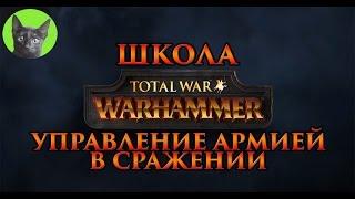 Школа Total War WARHAMMER #4 - Управление армией в сражении