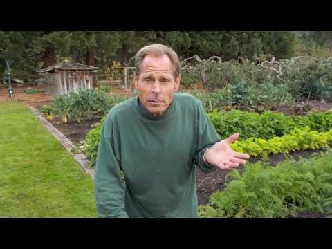 Paul Gautschi's Back to Eden Garden