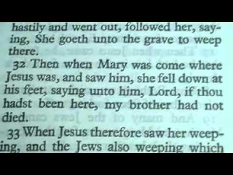 The book of JOHN king James Bible