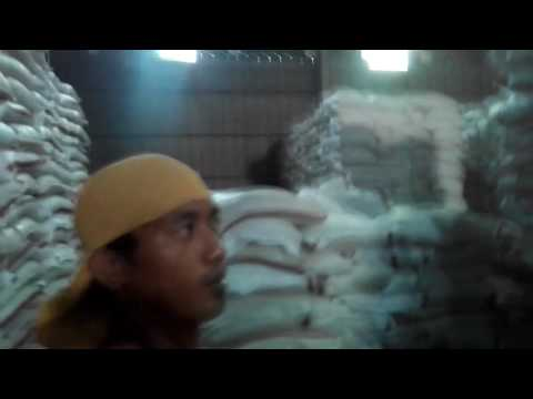 Sodel feeds mill corp