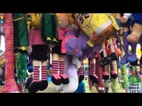 Sights and sounds of Horry County Fair
