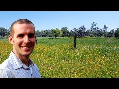NEON Terrestrial Observation Vegetation Sampling: A Presentation