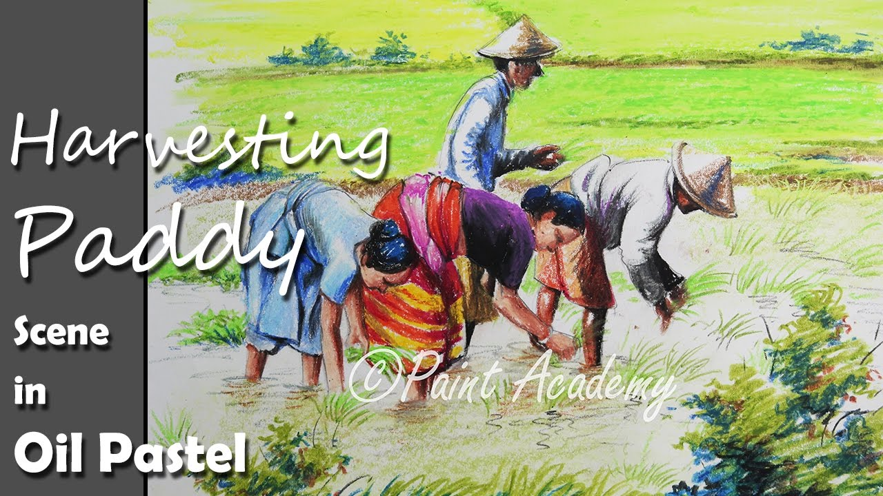 How to paint a village scene where farmers harvesting paddy on field step by step oil pastel art