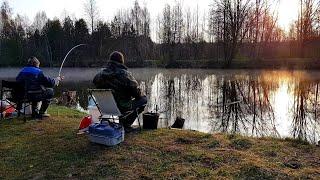 Всем Кто Ждёт Весну Воспоминания О Рыбалке Ранней Весной Рыбалка С Ночёвкой Фидер Друть АРХИВ