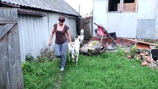 Простая ДЕРЕВЕНСКАЯ ЖИЗНЬ. Как живут в Российской деревне
