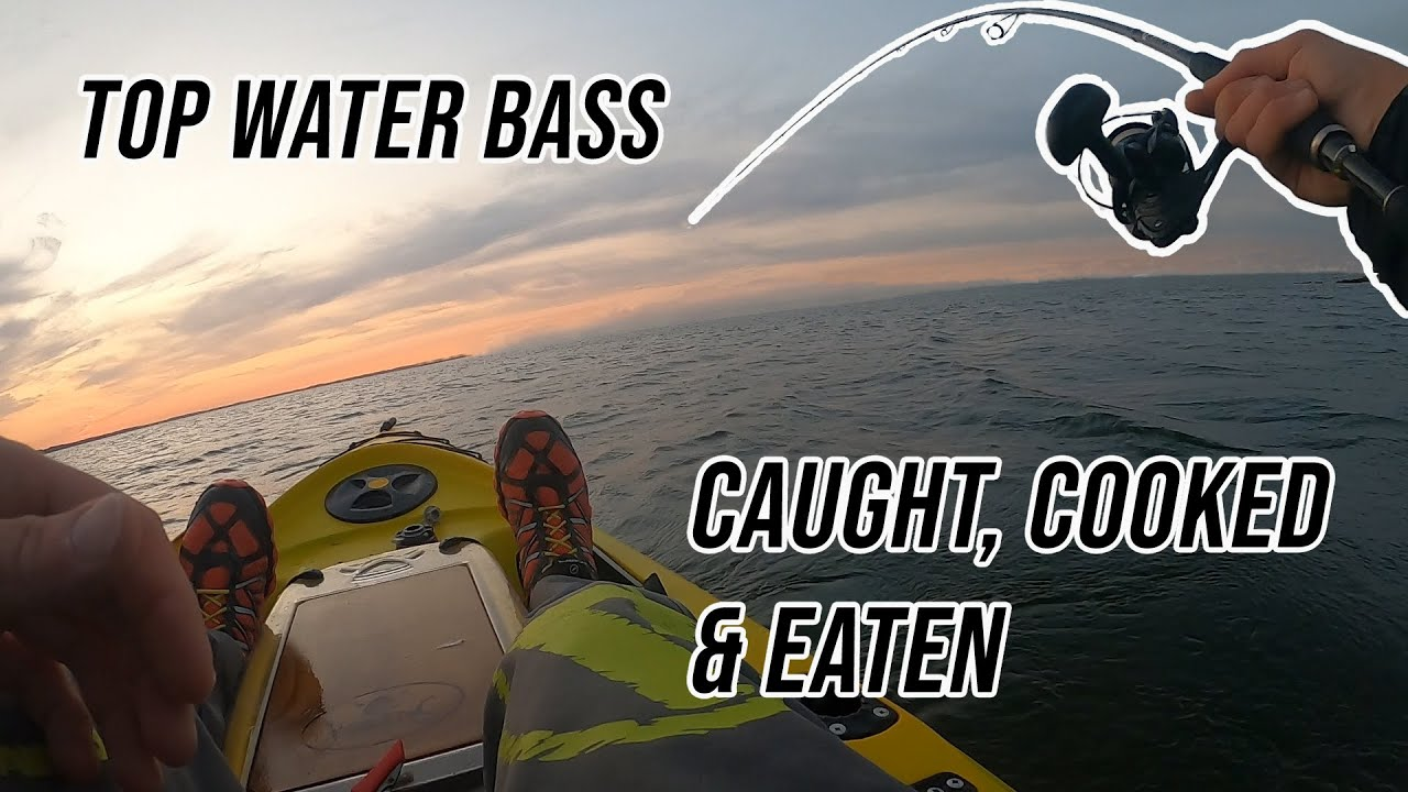 Bass Catch, Clean & Cook on a Camp Fire   Lure Fishing UK