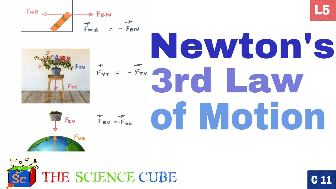 newton s 3rd law action and reaction 5 youtube
