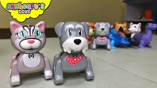 We have a SINGING PETS challenge! Dogs, Cats, dinos, birds toys silverlit lil friends