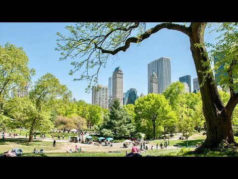 NEW YORK CITY 2018: SPRING in CENTRAL PARK [4K]