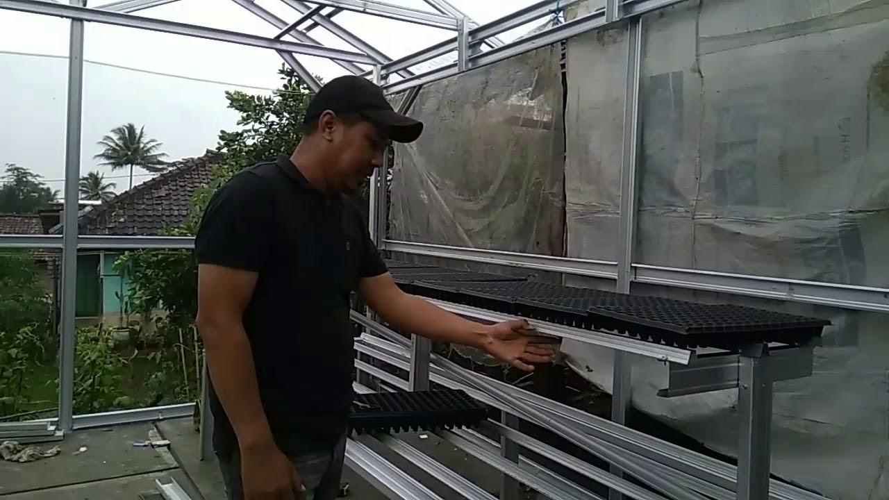 Pembuatan Rak Kebun Bibit Baja Ringan Di Kwt Pusaka Baru Cibatu