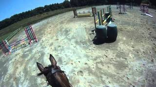 [We Came, We Saw, We Kicked Butt]  Blue Goose Beg Novice Combined Horse Test 7-26-11
