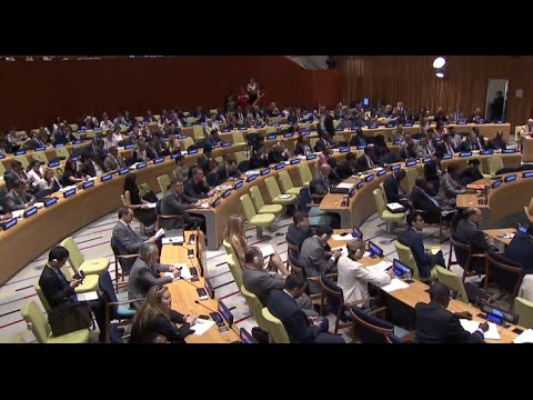 Two New Candidates for UN Chief Go Through Job Interview