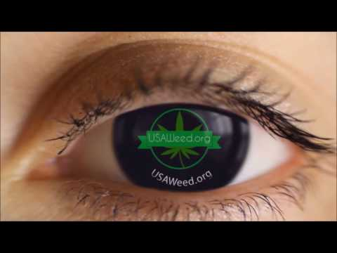 420 Friendly Cannabis Tourism Guide for USA