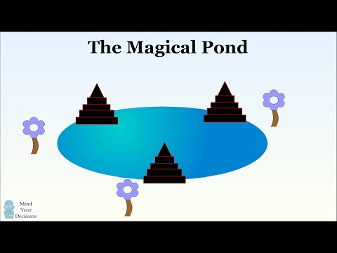 Can You Solve The Magical Pond Puzzle?