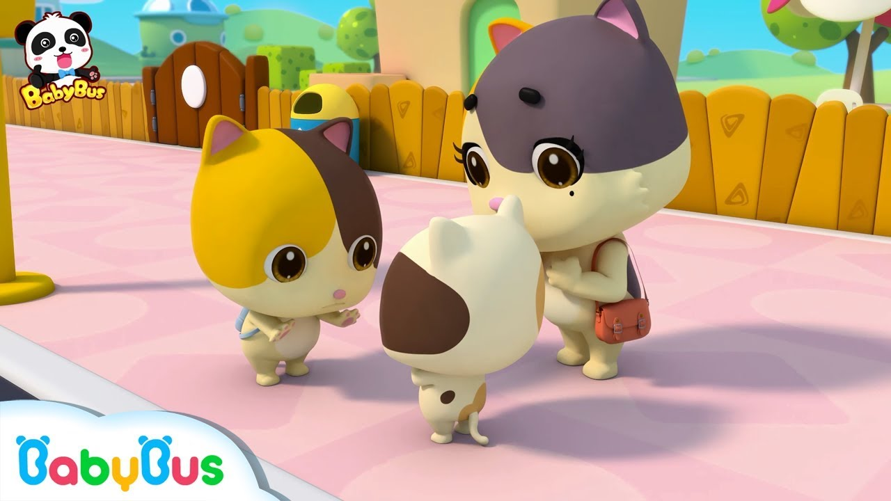 Kitten Pictures For Kids