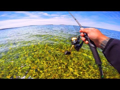 Fishing ULTRA CLEAR Water | Sturgeon Bay Series Pt. 1