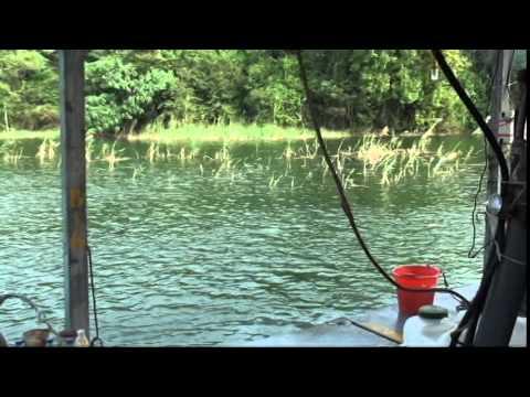 Dredging Pump GPH-10150 with & Water Jet (GH-875) & Excavator *4
