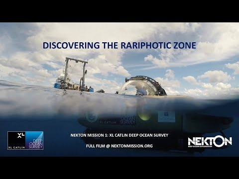 Nekton Mission I - Discovering the Rariphotic Zone