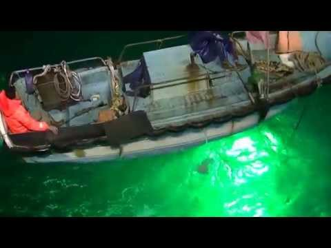 The Video Of Led Fishing Light Test In Ocean 1