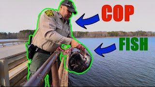 Called The COPS While Magnet Fishing (Saved Fish)