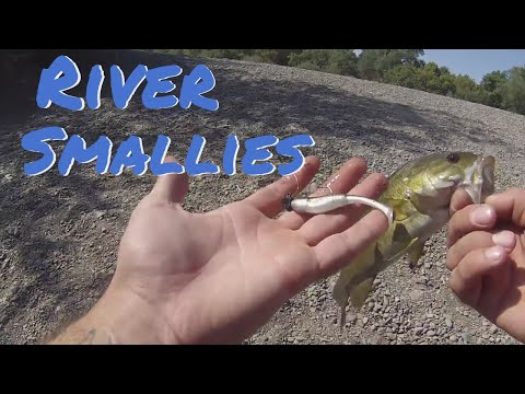 Russian River Smallmouth Fishing