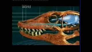 Prehistoryczne Bestie Megalania