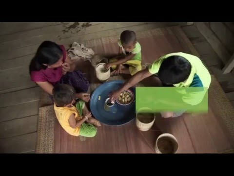 Poultry Raising - Laos Nutrition Project (6/6) | Health Poverty Action