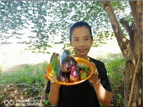 How To Cook FoodRoast Purple Eggplant with fish Ssuce IS food Eat Delicious