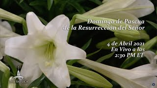 Misa del Domingo de Pascua – April 4, 2021
