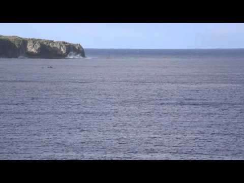 Niue Baie de Alofi / Niue Alofi bay