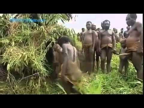 геи африканцы порно