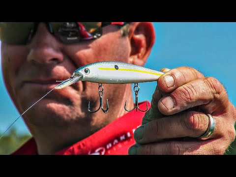 All-Season Jerkbait Strategies With KVD [Video]