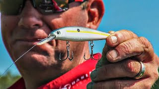 All-Season Bass Fishing Jerkbait Strategies With KVD