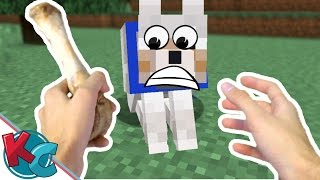 Realistic Minecraft Shorts: First Pet Puppy