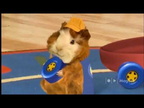 The Wonder Pets Save The Yak Pig And Dancing Bear Youtube