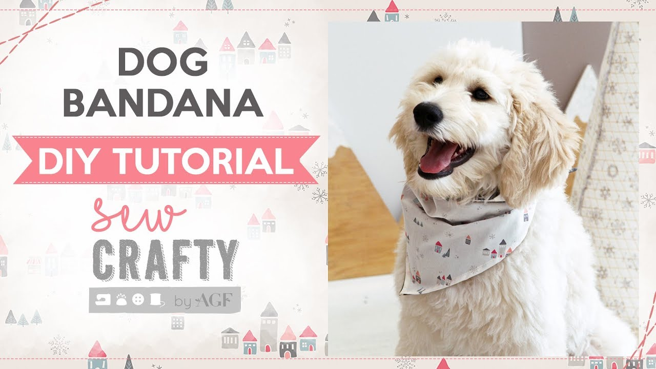 how to make a dog scarf