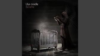 Lily's Cradle