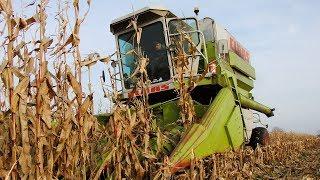 Claas Commandor 114 CS – rekordzista ciągle w akcji. Zbiór kukurydzy 2017