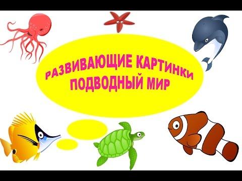 РАЗВИВАЮЩИЕ КАРТИНКИ ПОДВОДНЫЙ МИР.УЧИМ ОБИТАТЕЛЕЙ ПОДВОДНОГО МИРА...Undersea world...