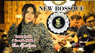 NEW BOSSQUE_colak colek( camelia malik)cover TYA AGUSTIN