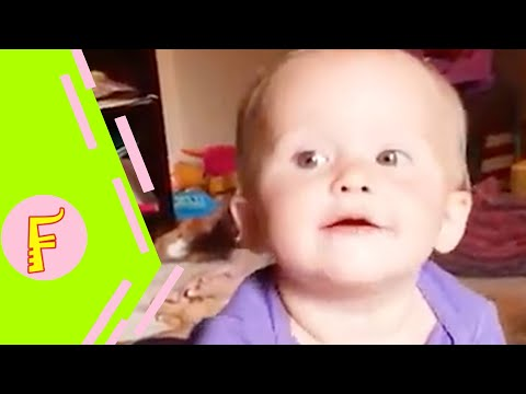 Funniest Baby Siblings Fight Over - Fun and Cute