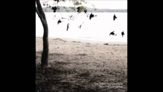 [3.33 MB] The Tallest Man on Earth - Bright Lanterns