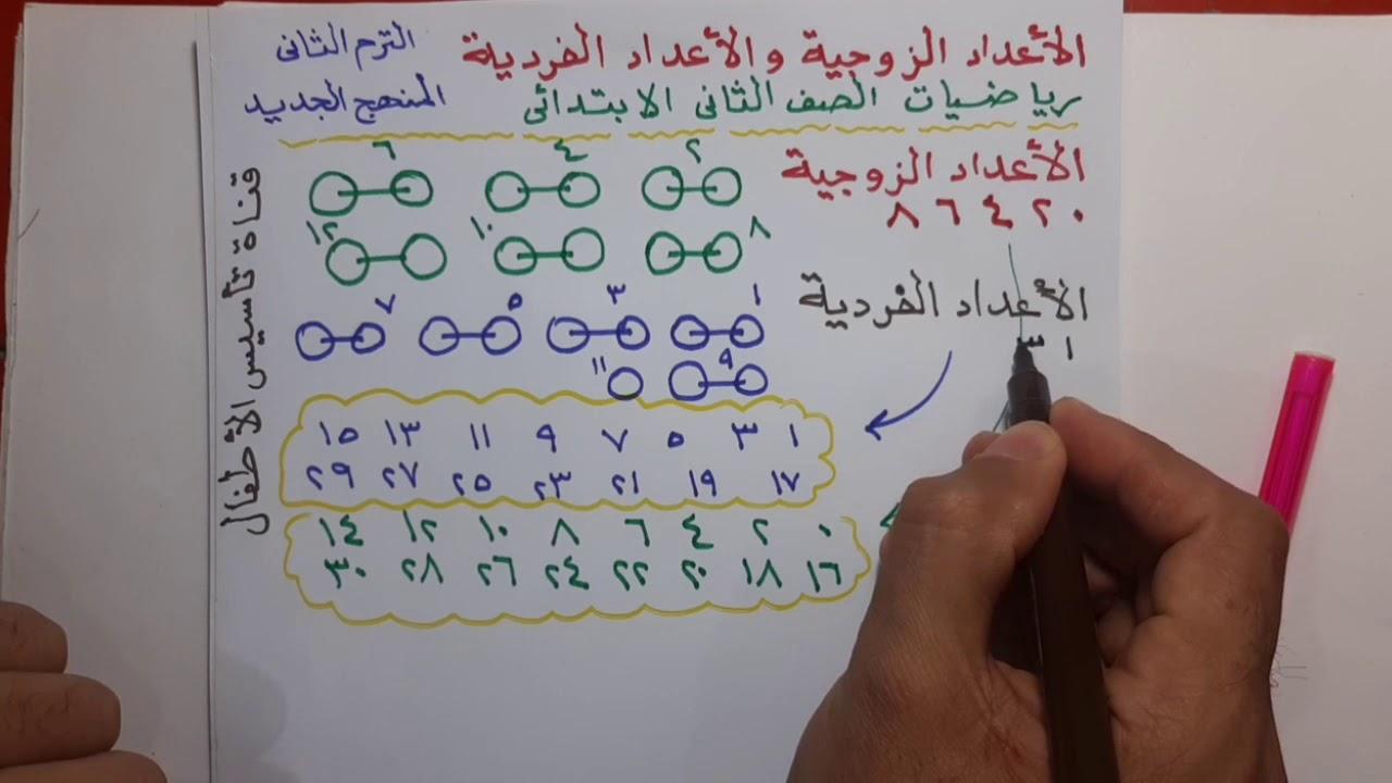 درس الاعداد الزوجية والاعداد الفردية للصف الثاني الابتدائي الفصل الدراسي الثاني Youtube